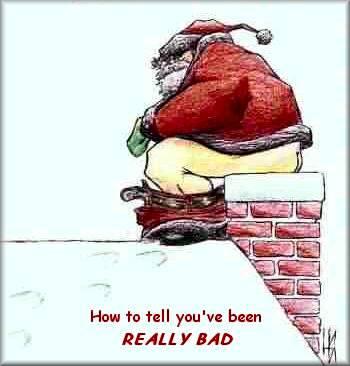 今天你砍冷杉树了吗?-我们为什么要过圣诞节 - liblog - Liblog 第九传媒
